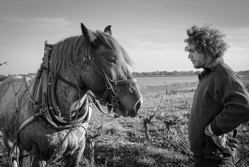 Benoit Courault, labours © Jean-Yves Bardin 2011
