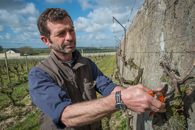 Jean-Yves BARDIN, clos cristal, vigneron, bio, vin nature, biodynamie, vin, wine, photographie, photography