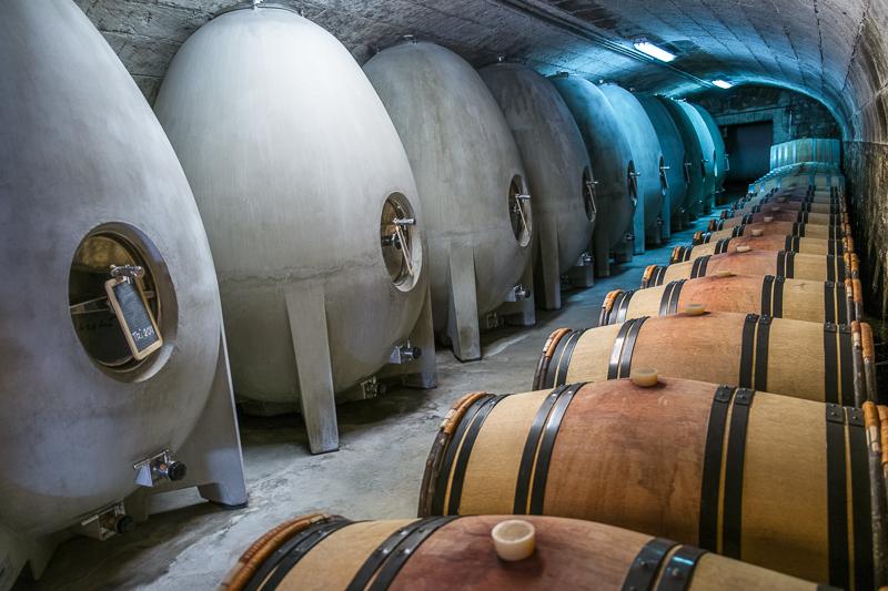 Jean-Yves BARDIN, chateau de fosse sèche, vigneron, bio, vin nature, biodynamie, vin, wine, photographie, photography