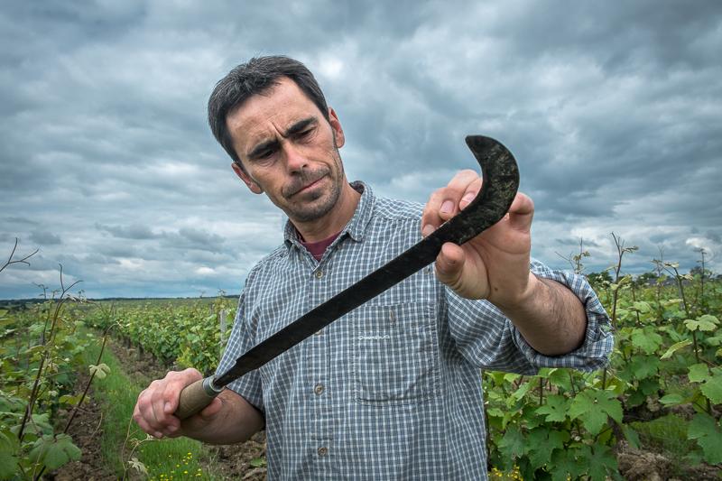 Jean-Yves BARDIN, Bruno Rochard, bio, vin nature, biodynamie, vin, wine, photographie, photography