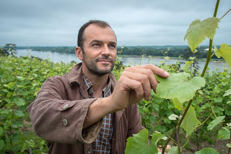 Jean-Yves BARDIN, Eric Morgat, Savennières, vigneron bio, vigneron d'anjou, biodynamie, vin, wine, photographie, photography