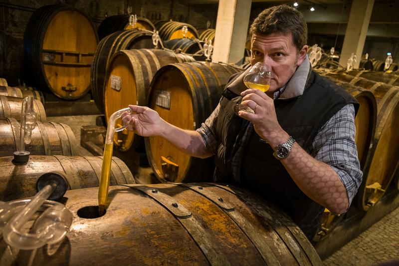 Jean-Yves BARDIN, Zind-Humbrecht, vins d'Alsace, Turckheim, biodynamie, cave, art, gueules de vigneron