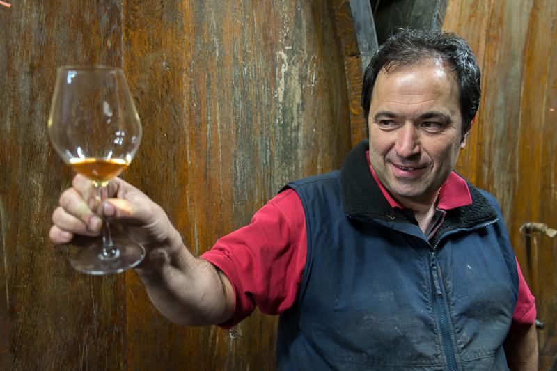Jean-Yves BARDIN, Domaine Gérard Schueller et fils, vins d'Alsace, Husseren-les-châteaux, biodynamie, cave, gueules de vigneron