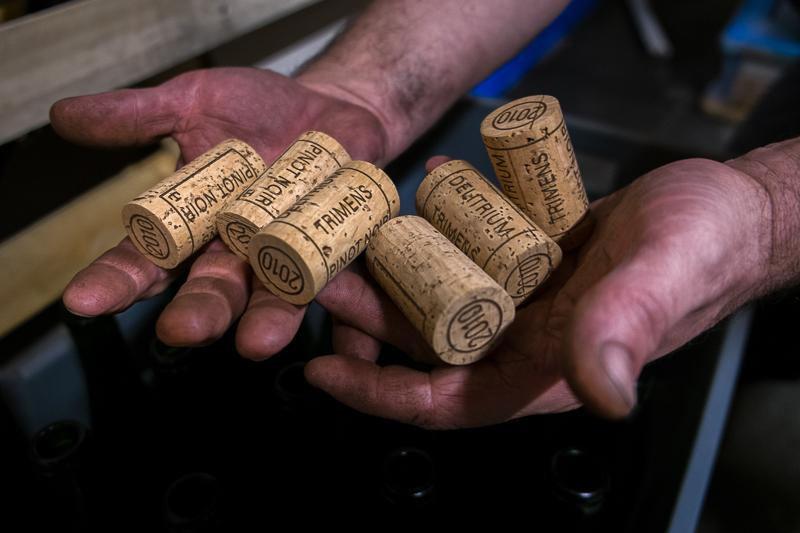 Jean-Yves BARDIN, Gérard Schueller, vins d'Alsace, biodynamie, cave, gueules de vigneron