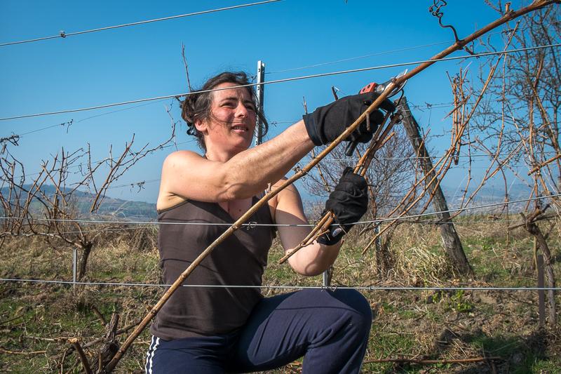 Marie Tricot, Vigneron, gueules de vignerons, vin nature, vigneron d'auvergne, Jean-Yves BARDIN