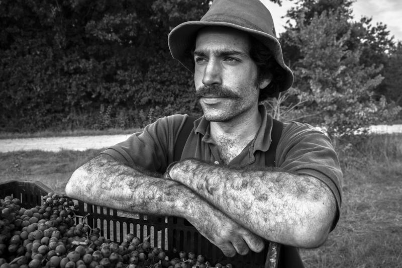 Gueules de vendangeurs, gueules de vignerons, photographe portrait vigneron, winemaker, Jean-Yves bardin photographe