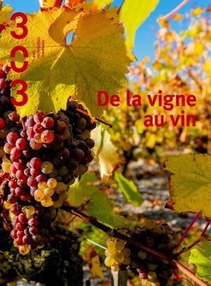 303-de la vigne au vin