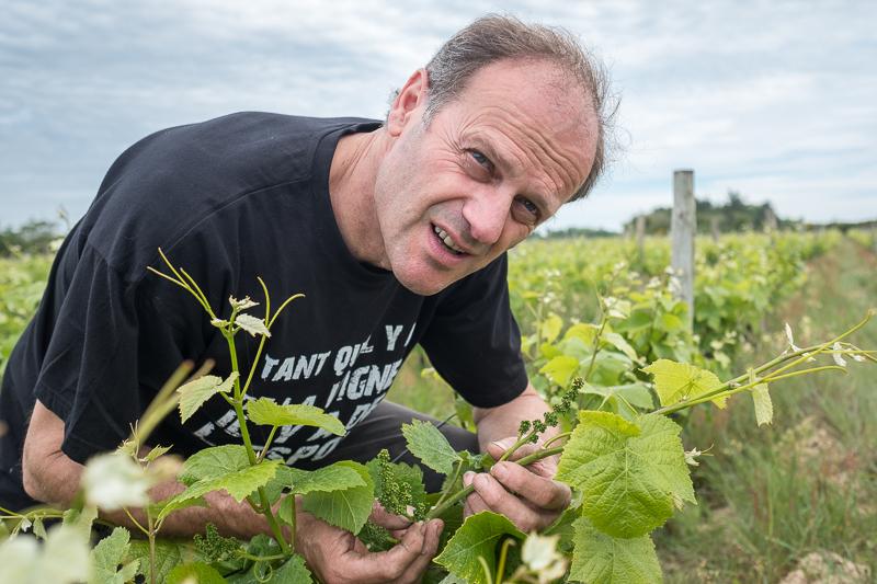 Thierry Michon, Domaine Saint-Nicolas, gueules de vignerons, vigneron bio, vignerons fiefs vendéens Brem, vin biodynamie, organic wine, winemaker, Jean-Yves bardin photographe Gueules de vignerons, portraits de vignerons, fiefs vendéens