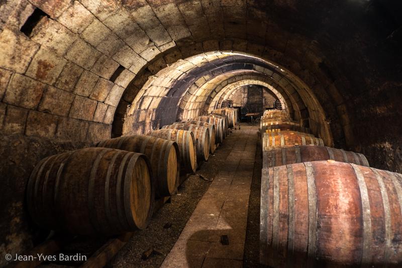 Domaine de la Garrelière, Richelieu, biodynamie, Vigneron Chinon Touraine, gueules de vignerons, vin nature, Jean-Yves BARDIN, Francois Plouzeau, vigneron Chinon Touraine, vigneron bio, cave, biodynamie, vin nature, wine, photographe, gueules de vignerons, vins de loire, cave Chinon, cave Touraine