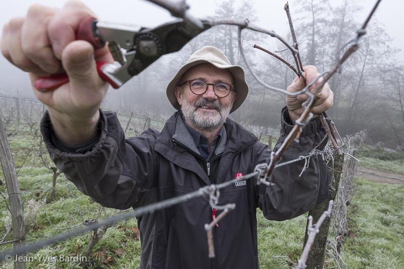 Yves Guégniard, domaine de la Bergerie, vigneron, biodynamie, winegrower - portrait, vin nature, bio, gueules de vignerons, vigneron bio, vignerons d'Anjou, Jean-Yves Bardin photographie