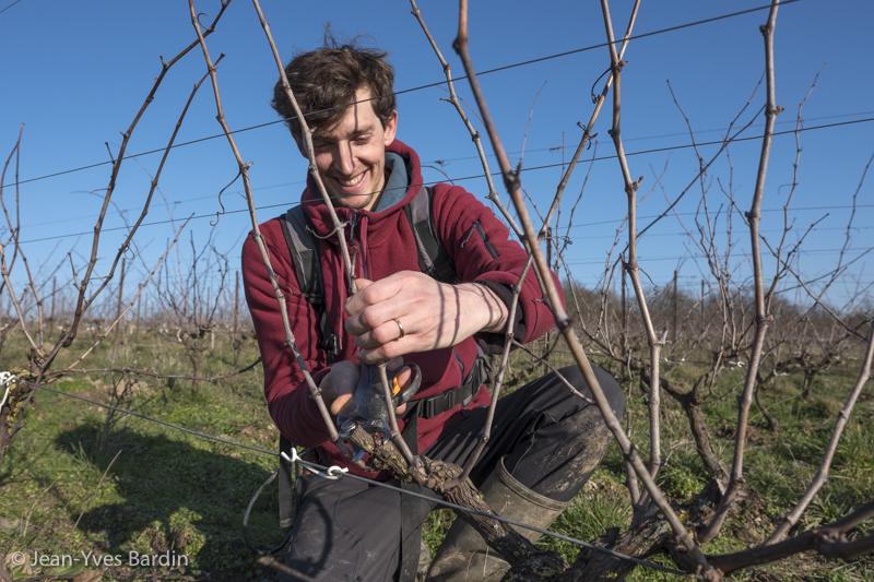 Olivier Lejeune, le Clos des Plantes, vigneron d'Anjou, vin bio, biodynamie, Montbenault, Gueules de vignerons, Jean-Yves Bardin photographe, Poïèsis, Whaka piripiri mai